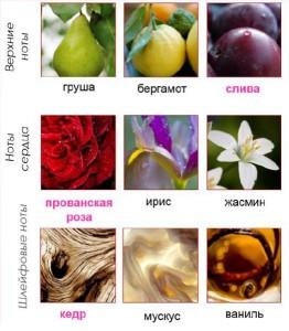 Avon Prima-состав аромата